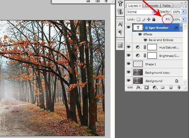 Обработка фотографий для блога | Защита изображения