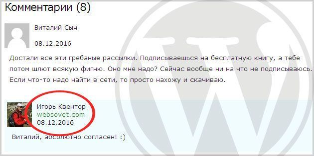 Красивые комментарии wordpress |  wordpress шаблоны