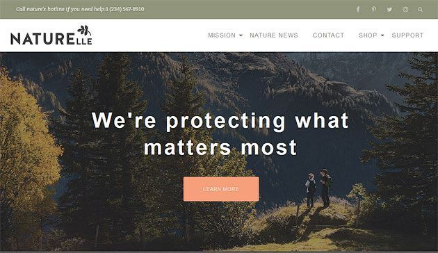 Naturelle — красивый и бесплатный шаблон одностраничного сайта на WordPress