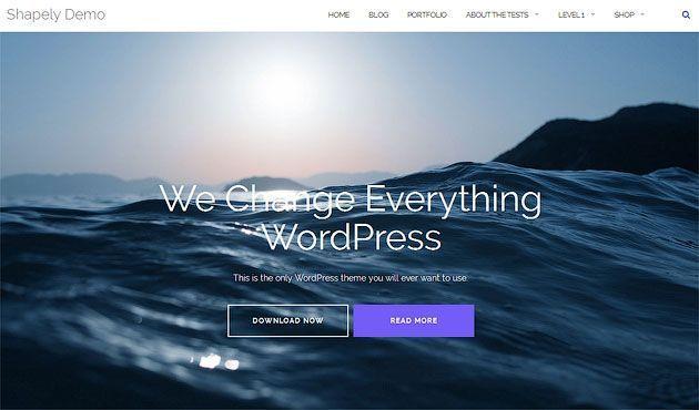 Shapely — прекрасный премиум шаблон WordPress с адаптивным дизайном