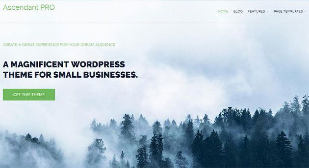 Ascendant — отличный многоцелевой шаблон WordPress