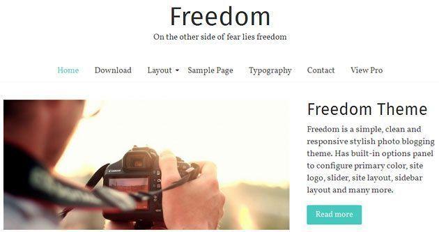 Freedom — простой, чистый и адаптивный шаблон WordPress для фото-блога