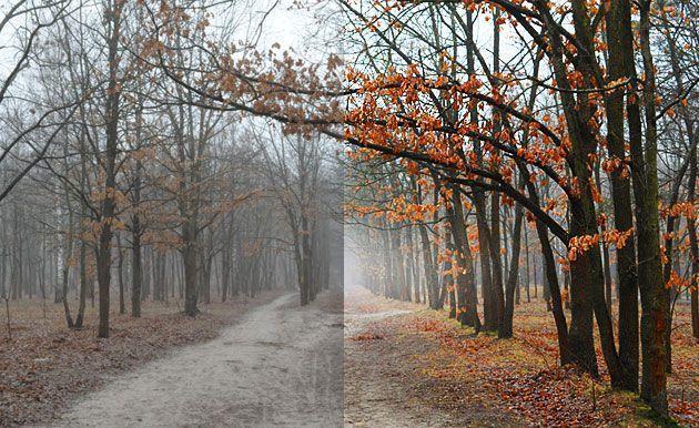 Как сделать меняющуюся картинку на сайте «до и после»