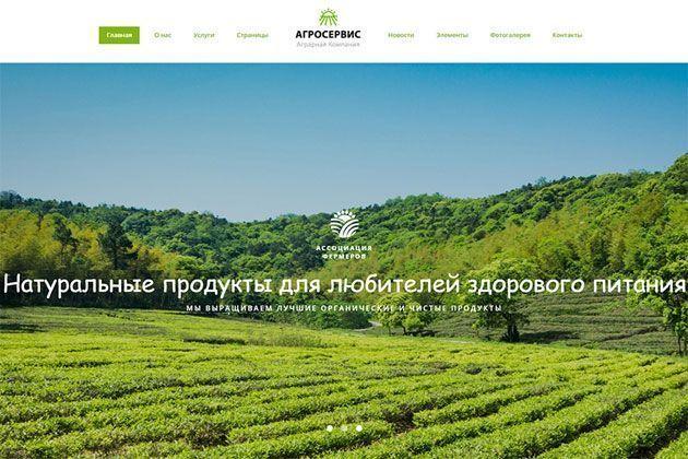 Агросервис — готовый многостраничный HTML шаблон сайта органической еды